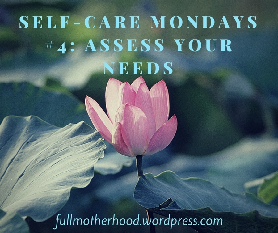 Self-Care Mondays 4 Assess Your Needs.jpg